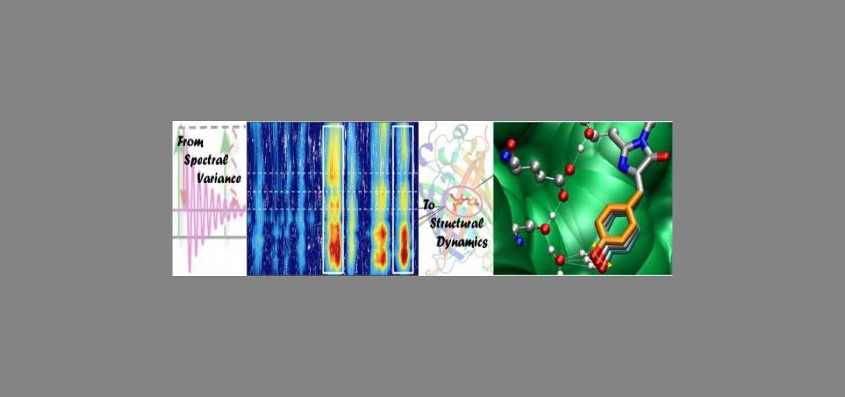 From spectral variance to structural dynamics header